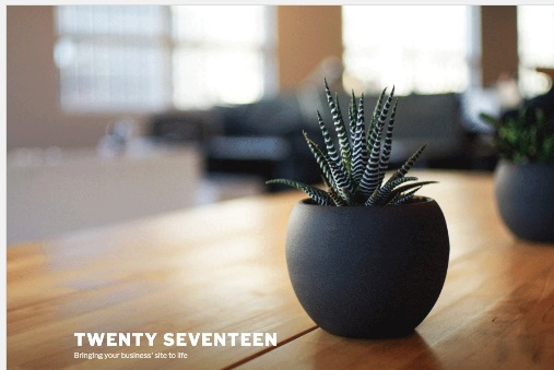 Twenty_Seventeen